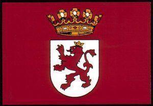 Bandeira País Llïonés